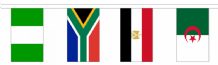 Africa - 53 Country Flag Bunting - 16m Long